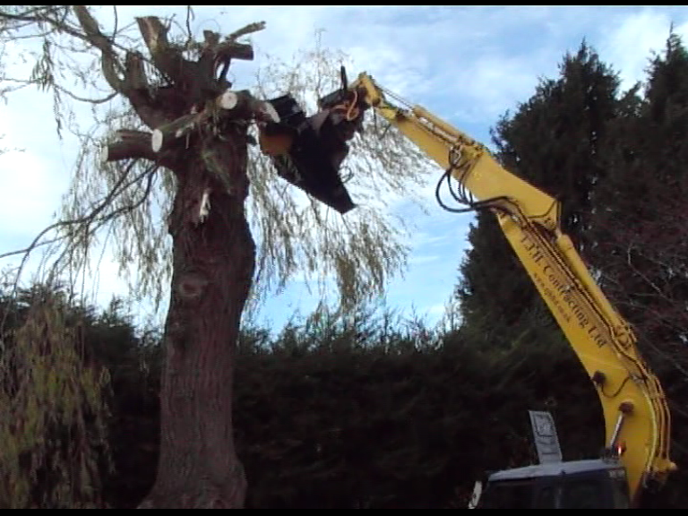 Still picture of Tree Cutter